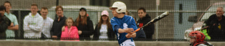 Baseball banner image.