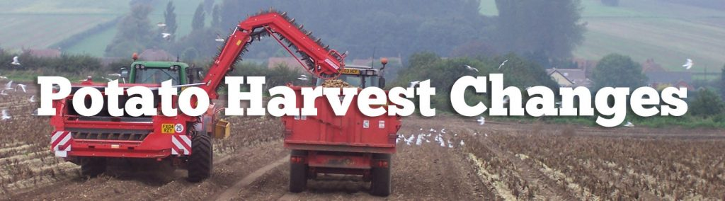 potato harvest changes