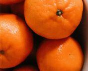 SSHS Orchestra Navel Oranges Fundraiser